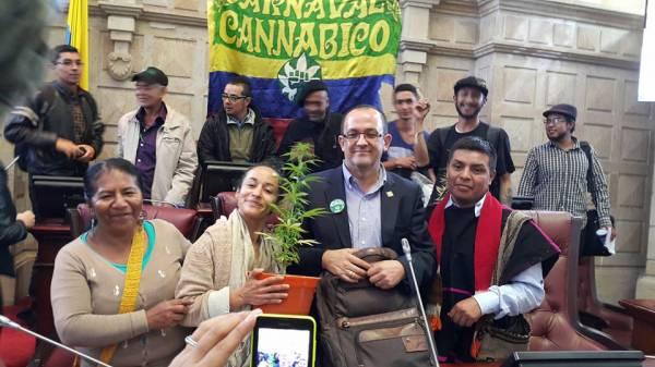 Audiencia Pública: Marihuana, más allá de lo medicinal